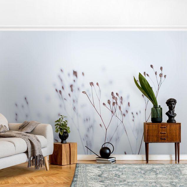 Fototapete - Zartblaue Wildblumen