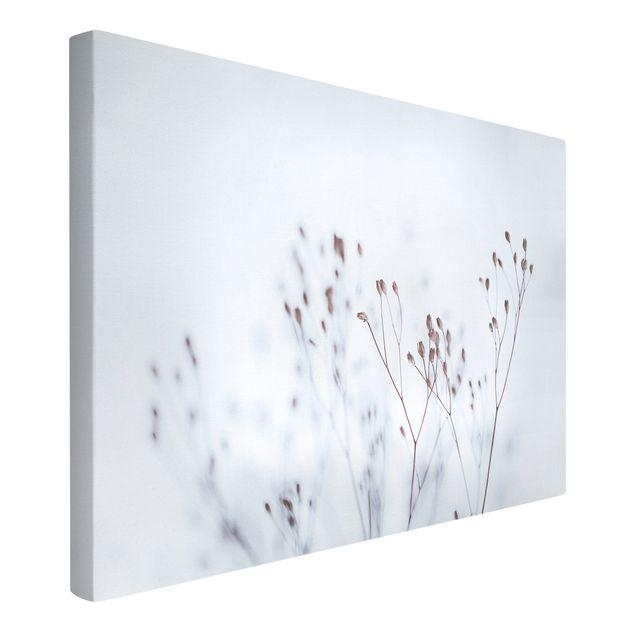 Leinwandbild - Zartblaue Wildblumen - Querformat 3:2
