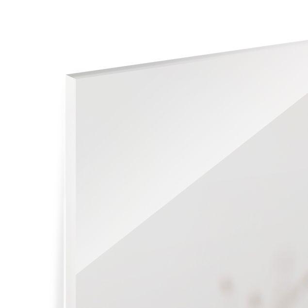 Spritzschutz Glas - Zarte Gräser im Windschatten - Quadrat 1:1