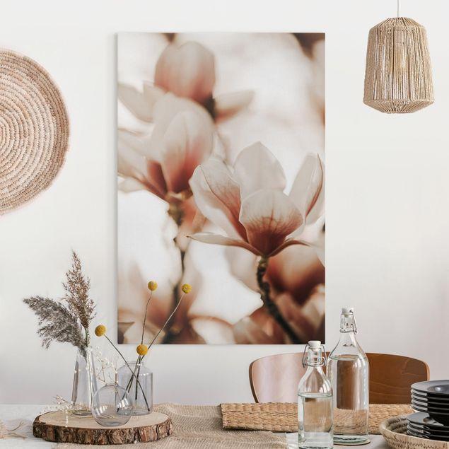Leinwandbild - Zarte Magnolienblüten im Lichtspiel - Hochformat 2:3