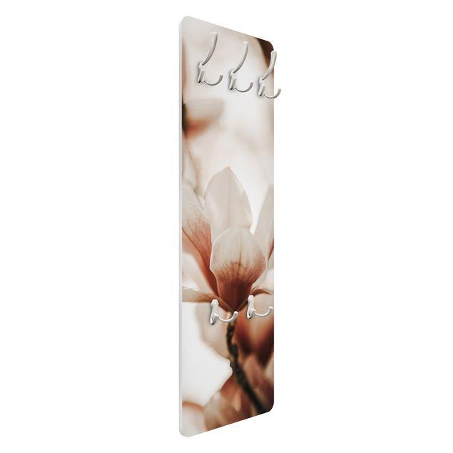 Garderobe - Zarte Magnolienblüten im Lichtspiel