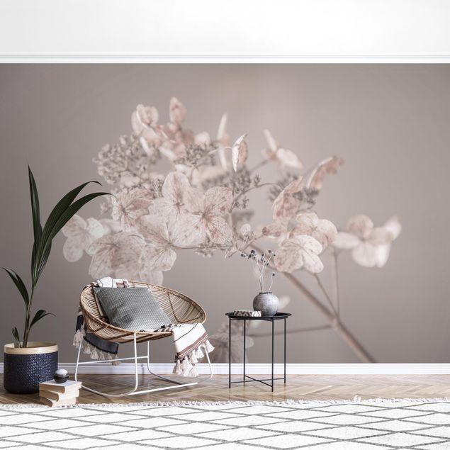 Fototapete - Zarte weiße Hortensie