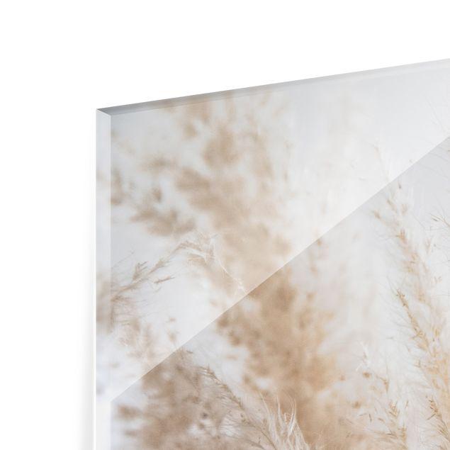Spritzschutz Glas - Zartes Pampasgras Close Up - Querformat 3:2