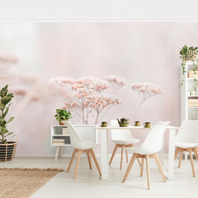 Fototapete - Zartrosane Wildblumen