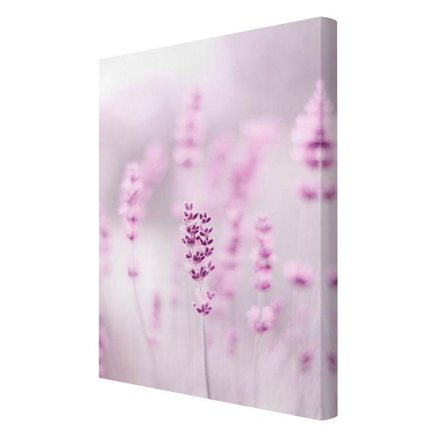 Leinwandbild - Zartvioletter Lavendel - Hochformat 2:3