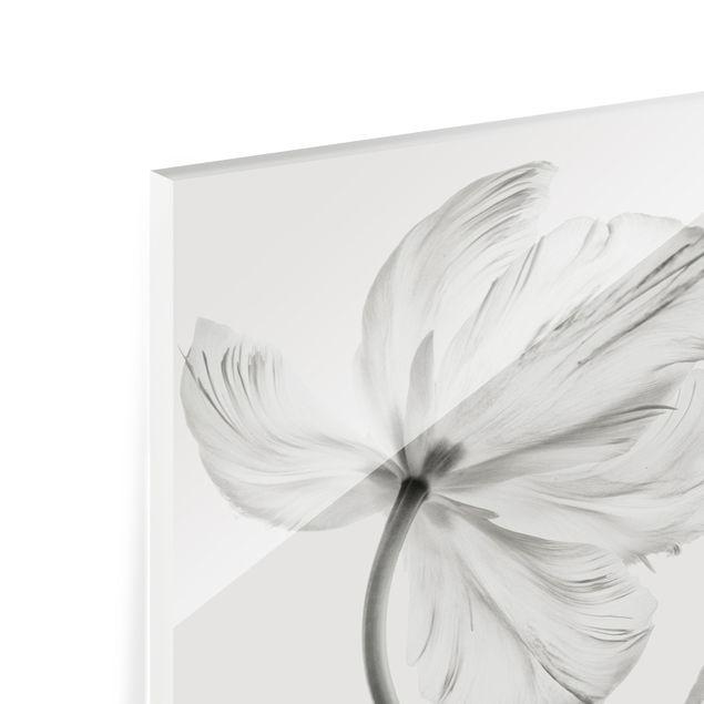 Spritzschutz Glas - Zwei zarte weiße Tulpen - Quadrat 1:1